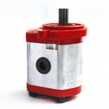 Hydraulic External Gear Pumps