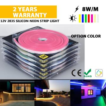 12V Neon lights 5M sets
