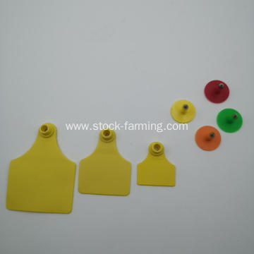 ear tag used in pig cattle ear tag definition
