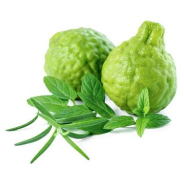 Bergamot Essential Oil Aromatherapy Oil