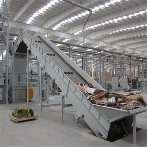 Pulper Feed Conveyors 06