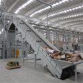 Feeding Conveyor For Pulper