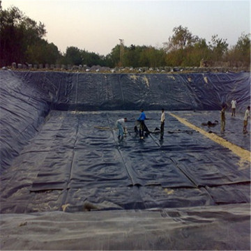 High Qualtiy 0.5mm Thickness HDPE Geomembrane
