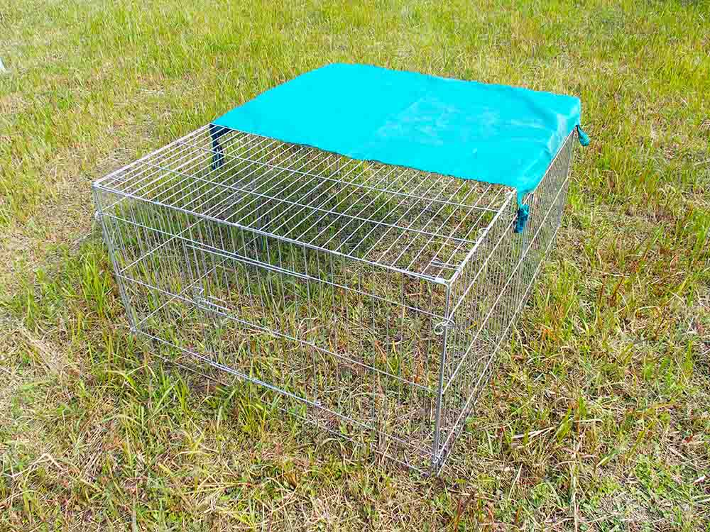 galvanized rabbit cages