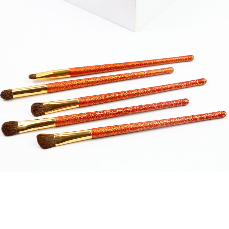 Eye Makeup Brush Set 5pcs