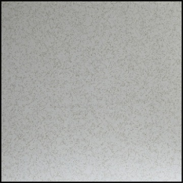 Anti-static PVC Covering Floor