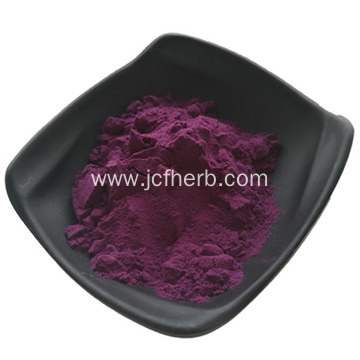 Acai Berry Powder Acai Berry Fruit Juice Powder