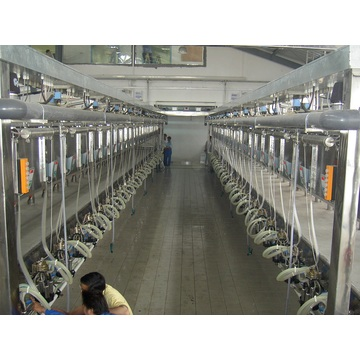 Parallel quick-release type milking parlor