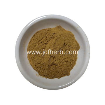 factory supply angelica root extract powder 10:1