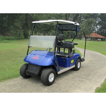 good price 2 seats  cheap golf kart for sale