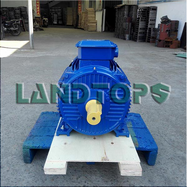 Y2 Three Phase Electric Motor 30 HP Price