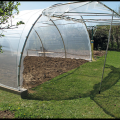 Agricultural PE Film Single Span Greenhouse