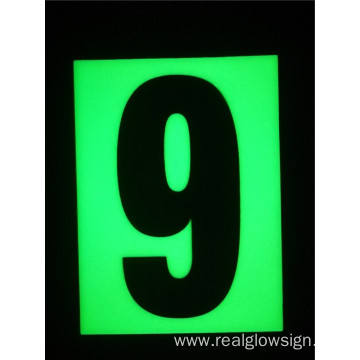 Realglow Photoluminescent  Flat Number 9