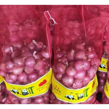 2020 New Crop Gansu  Fresh Red Onion