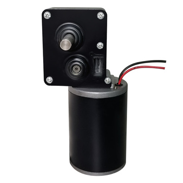 12V DC 300 rpm Low rpm Electric Motor Types of Gear Motor