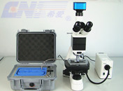 laser scanning microscope