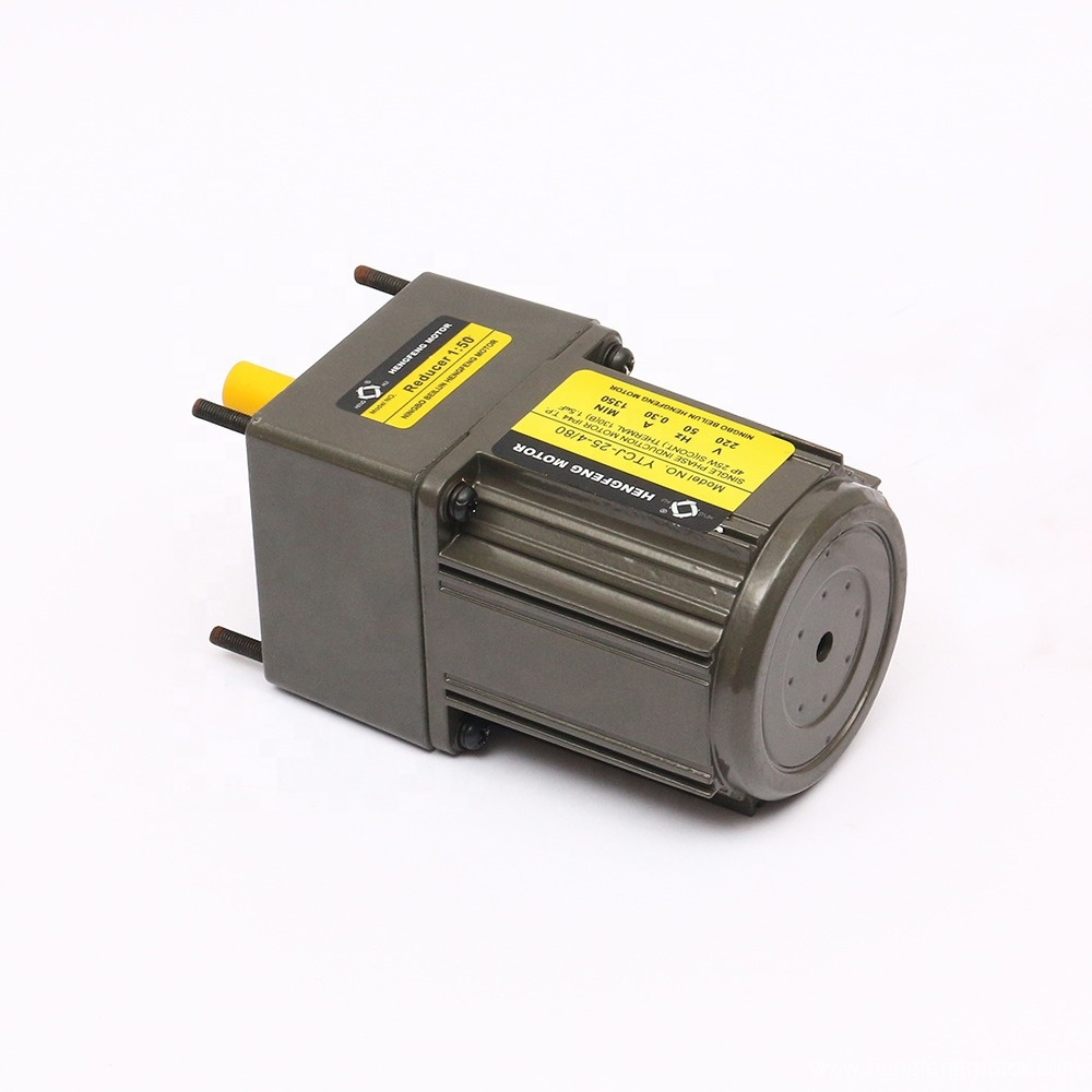 Induction 25W AC Gear Motor