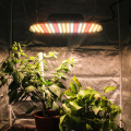 1000w Full Spectrum LED Grow Light Panel