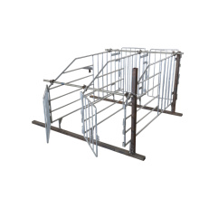 Customizable Galvanized Solid Rod Gestation Stalls For Pigs