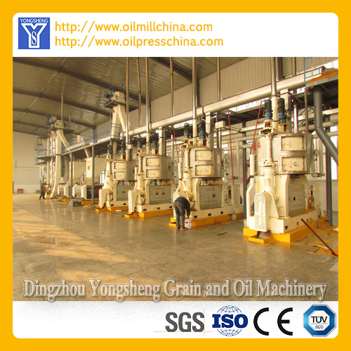 Corn Germ Oil Pressing Expeller Prodcution Line
