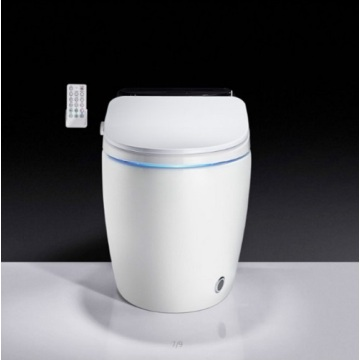 Water Closet Floor Mounted Smart Toilet