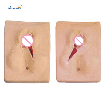 Vulva Suturing Training Simulator