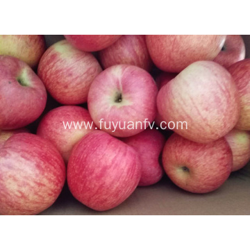 Fresh Qinguan apple with stripe color