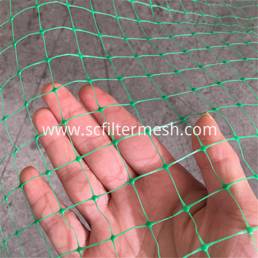 Green Bird Net