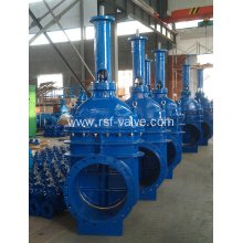 EN1171 Rising Stem Metal Seat Gate Valve