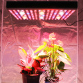 High Power COB Medical Herbs Grow Light 3000w