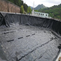 0.5/0.75/1.0/1.5/2.0mm Geomembrane HDPE Black Roll Membrane
