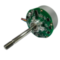 250rpm DC Motor Brushless, Brushless Worm Motor & High Speed ​​DC Brushless Motors Personnalisable