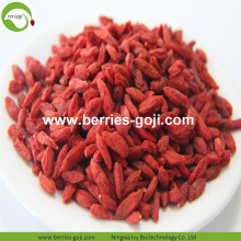 Factory Supply Fruits Nutrition Pack Goji Berry