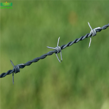 Cheap Galvanized Barbed Wire Fence