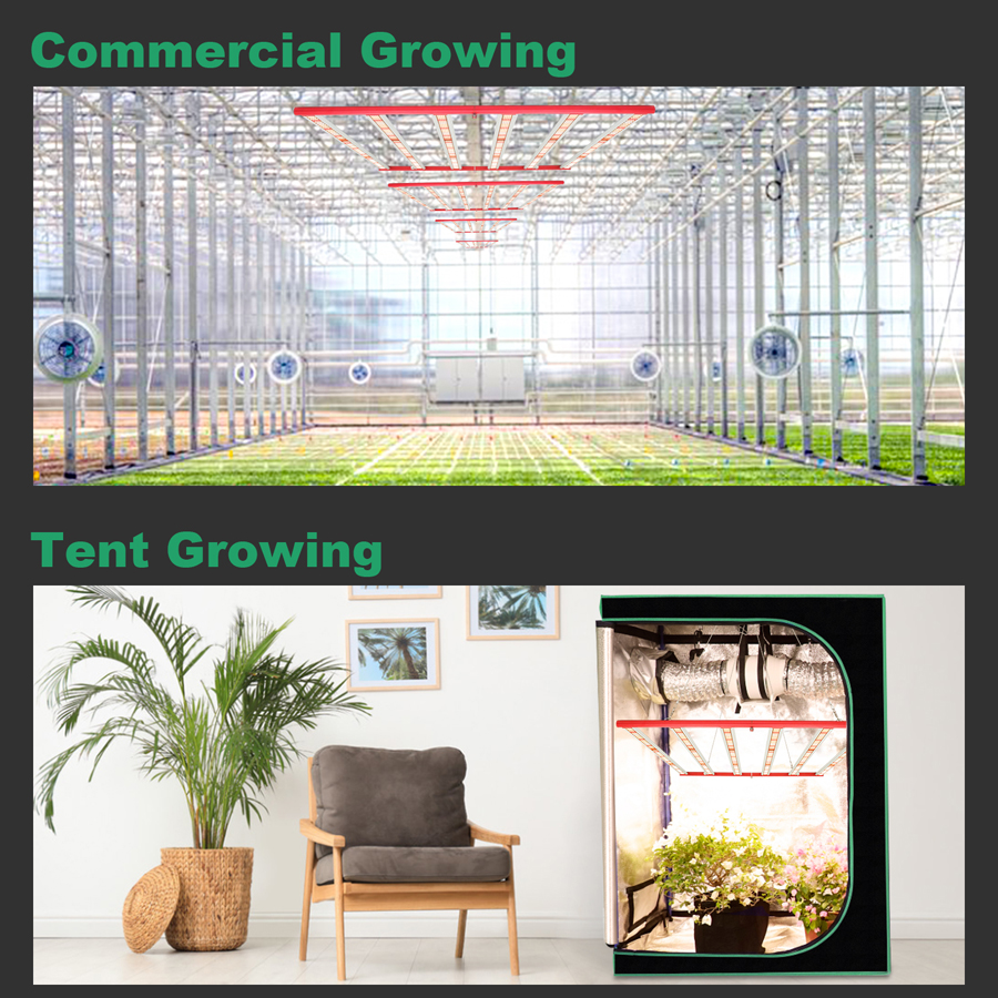 led grow light indoor plants