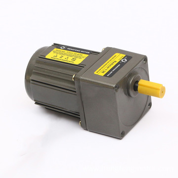 220V Single phase AC gear motor