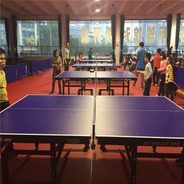 Table Tennis Sport Floor