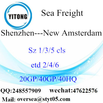 Shenzhen Port Sea Freight Shipping To New Amsterdam
