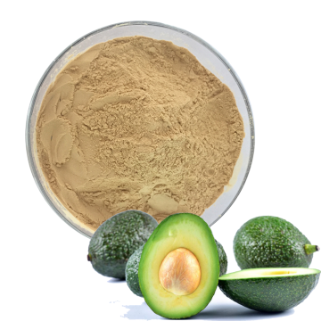 Organic Spray Dried Avocado Fruit Powder