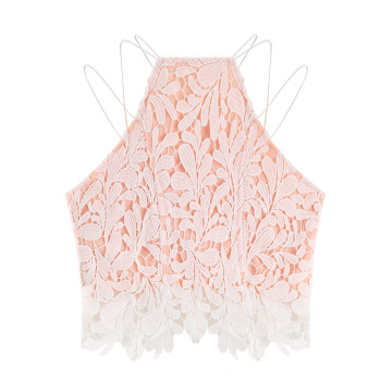 Sleeveless Hollow Out Lace Embroidery Crop Vest