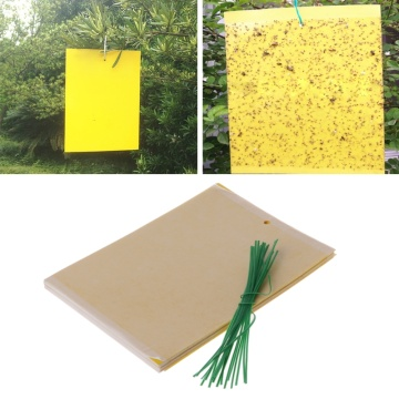 20Pcs Dual-Sided Yellow Sticky Traps for Flying Plant Insect Gardening Tools G8TB