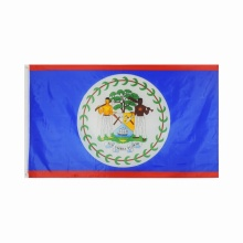 polyester printed 3x5 foot Belize national flag