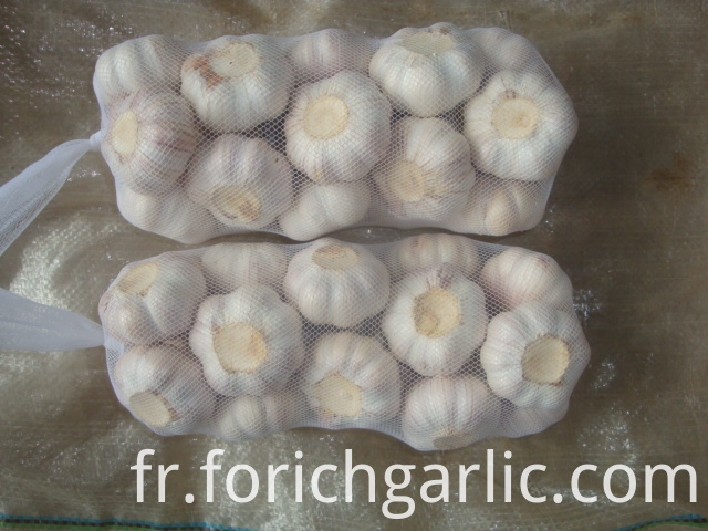 1kg Normal White Garlic