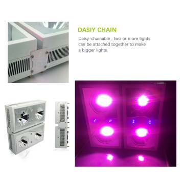 Aquaponics grow trays 300W led grow light panel