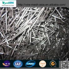 sanxing customized good cheap common nails