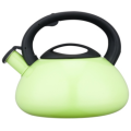 2.5L Stainless Steel Whistling Teakettle with color painting