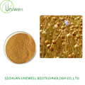 Flaxseed Extract Powder SDG 20%-40%