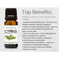 Private Label Cypress Essential Oil NATURAL UNDILUTED