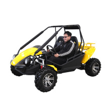 2 places kart buggy 250cc pour adulte