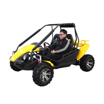 2 seater go kart 250cc buggy for adult